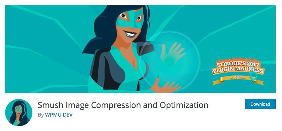 WordPress Maintenance Plugins 2018